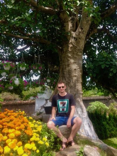 beautiful bonsai exhibition garden The Imperial City Hue Vietnam