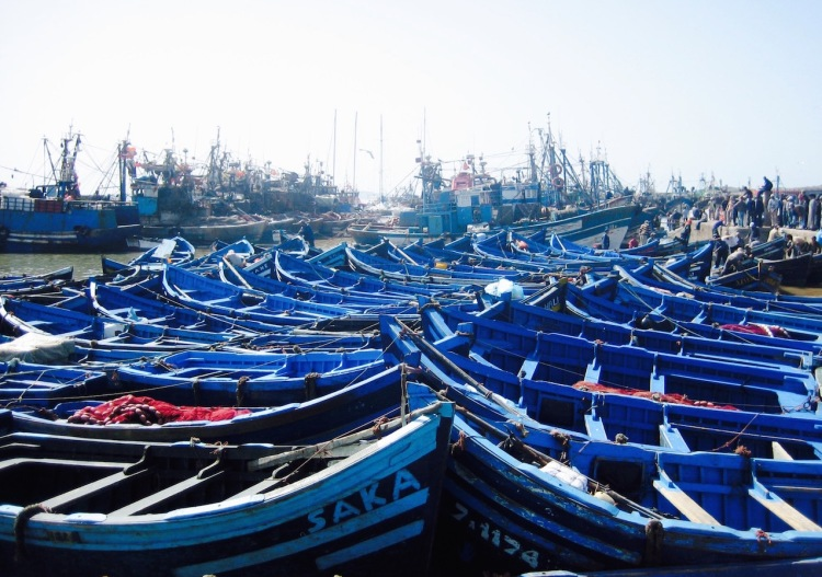 Blue fishing boats Essaouira Docks Morocco