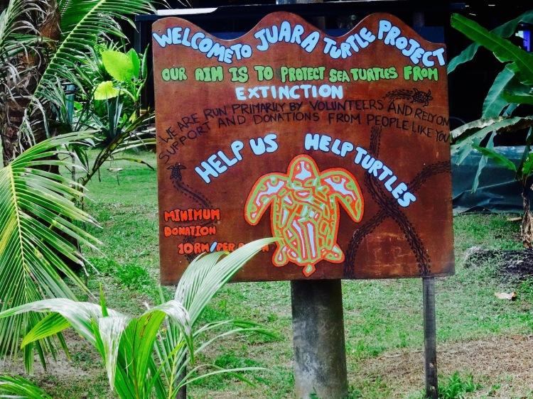 Juara Turtle Project Tioman Island Malayisa