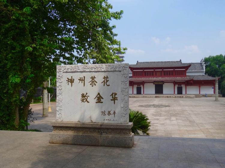 Jinhua Camellia Culture Park.
