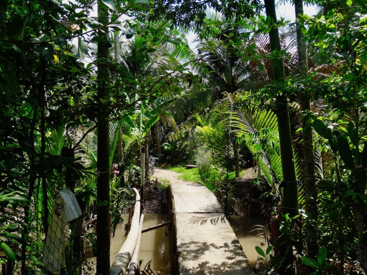 Nhon Thanh Village The Mekong Delta