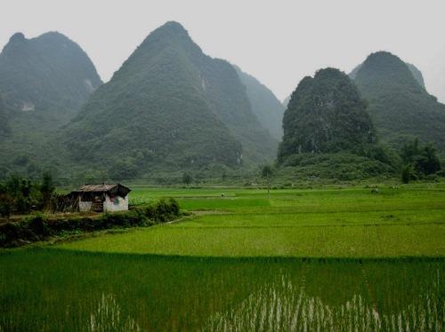 Cycling through Yangshuo County Guangxi China