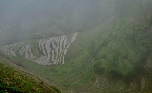Dragon's Backbone Rice Terraces Ping'an Village Guangxi China