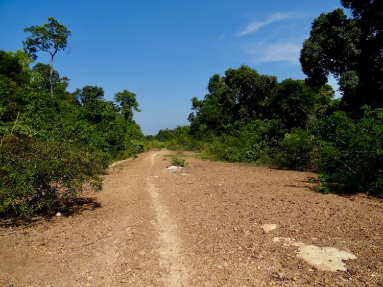 Hike from Nature Beach to Coconut Beach Koh Rong Cambodia