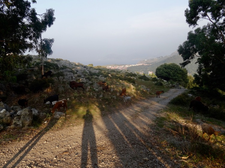 Hiking to The Virgin Mary Statue Castro Urdiales Spain