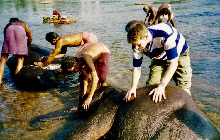 Kodanad Elephant Sanctuary Kerala India 2004