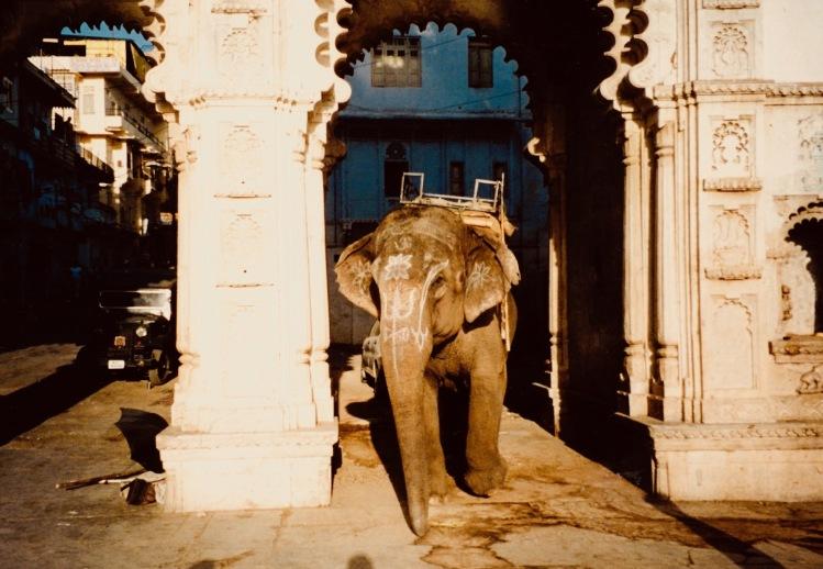 Lal Ghat Udaipur Rajasthan India