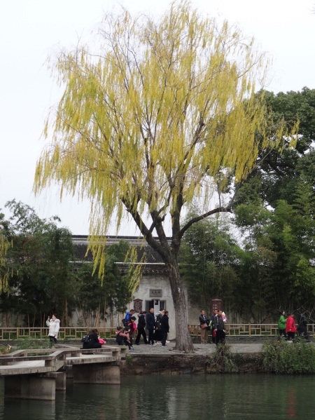 he Humble Administrator's Garden Suzhou China