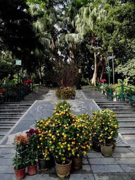Camoes Garden Macau.