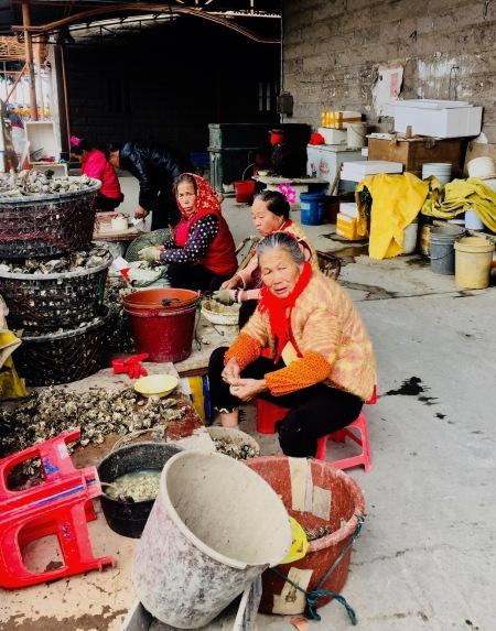 Women shelling oysters Xunpu Oyster Village Quanzhou Fujian Province China