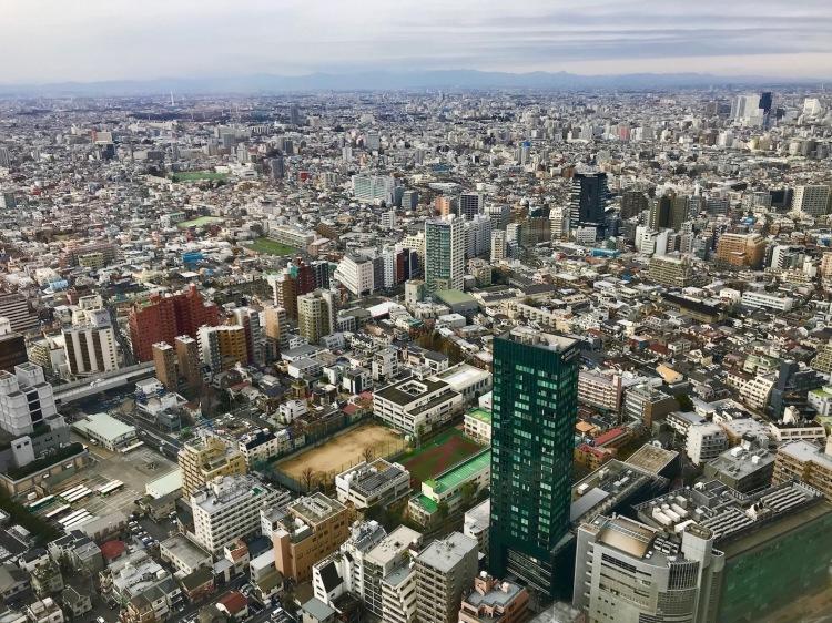 Tokyo views from Twin Bed Deluxe Room Park Hyatt Tokyo.