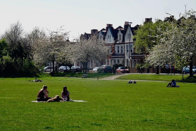 Elmbourne Road Tooting Common London.