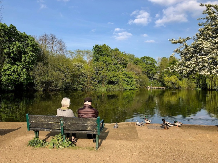 The lake at Tooting Bec Common London.