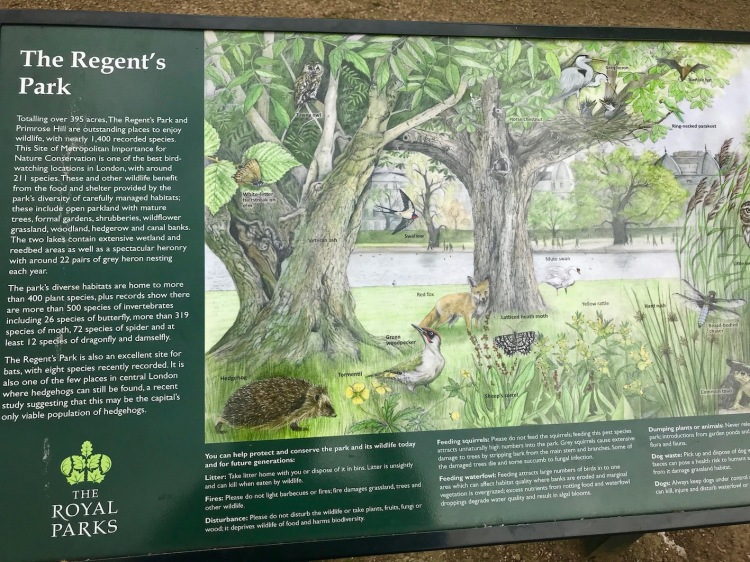 Visit Regent's Park London.
