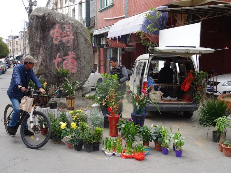 Plant market Xunpu Oyster Village Quanzhou